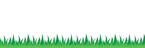 Seamless grass field illustration Stock Photography
