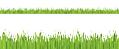 Seamless grass illustration Royalty Free Stock Images