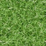 Seamless Grass Pattern Royalty Free Stock Photo