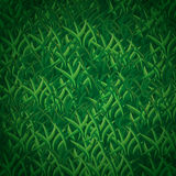 Seamless Grass Pattern Stock Photo