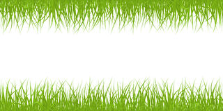 Seamless grass pattern Stock Images