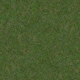 Seamless Grass Texture Stock Photos