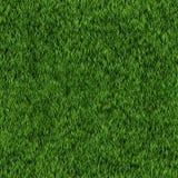 Seamless grass texture Stock Photography