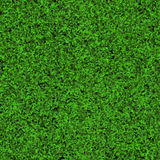 Seamless grass texture Stock Images
