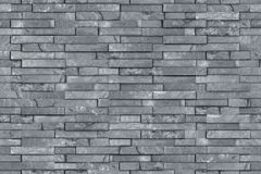 Seamless gray slate wall texture Royalty Free Stock Photography