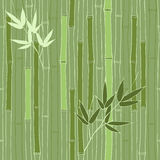 Seamless green bamboo pattern Royalty Free Stock Photography