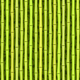 Seamless green bamboo texture Royalty Free Stock Image