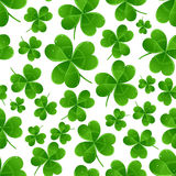 Seamless green clover leaves Stock Photo