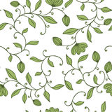 Seamless green floral pattern. On white background Stock Photos