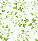 Seamless green floral pattern. File includes pattern swatch Royalty Free Stock Image