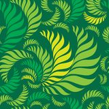 Seamless green floral pattern. With fern leafs vector illustration