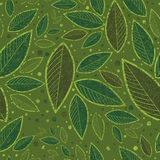 Seamless green floral pattern with leafs Royalty Free Stock Photos