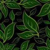 Seamless green floral pattern with leafs Stock Photos