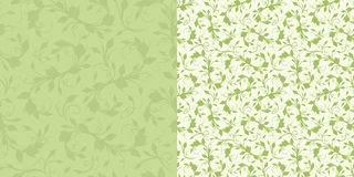 Seamless green floral patterns. Vector illustration. Two vector seamless green floral patterns Stock Photography