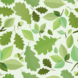 Seamless green foliage. Without gradient for printing Royalty Free Stock Photos