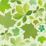 Seamless green foliage. Without gradient for printing Royalty Free Stock Photography