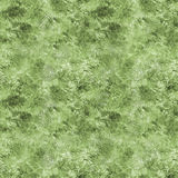 Seamless green grass background Stock Images