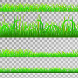 Seamless green grass Royalty Free Stock Photo
