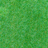 Seamless green grass texture from golf course Royalty Free Stock Photography