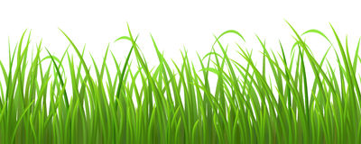 Seamless green grass Royalty Free Stock Photography