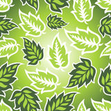 Seamless green leaves background Royalty Free Stock Photography