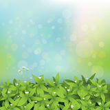 Seamless green leaves with little white flower background Stock Photography