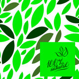 Seamless green leaves pattern. Icons are on a white background. Vector illustration. Stock Images