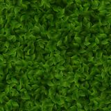 Seamless green leaves pattern spring or summer fresh background. EPS 10 stock illustration