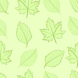 Seamless green leaves Royalty Free Stock Image
