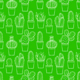 Seamless green little cactuses Stock Images