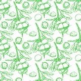 Seamless green macadamia branches Royalty Free Stock Photos