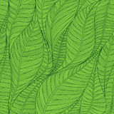 Seamless green pattern with abstract linear leaves. stock illustration