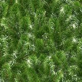 Seamless green pattern. Christmas tree branches. Seamless green pattern from Christmas tree branches. Realistic illustration. The branches of the pine are Stock Photography