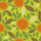 Seamless green pattern with cute oranges Royalty Free Stock Images