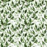 Seamless green pattern Royalty Free Stock Photos