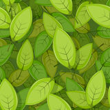 Seamless Green Spring Leaves Background Royalty Free Stock Photo