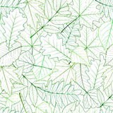 Seamless with green spring leaves Royalty Free Stock Photo