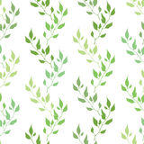 Seamless green spring pattern with olive leaves Royalty Free Stock Images