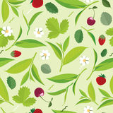 Seamless Green tea leaves pattern, lemon, cherry. Flat illustration Stock Image