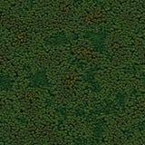 Seamless Green Terrain Background Stock Image