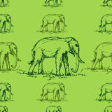 Seamless green tone elephant pattern  vector Stock Images