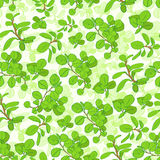 Seamless green tree branch leaves floral pattern Royalty Free Stock Photos