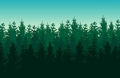 Seamless green vector forest landscape with coniferous trees. vector illustration