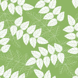 Seamless green and white leaves background pattern Stock Photo