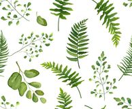 Seamless greenery green leaves botanical, rustic pattern Vector. Floral watercolor style design: forest fern frond leaf, herbs. Nature Wallpaper, natural stock illustration