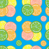 Seamless groups of citruses Stock Photography