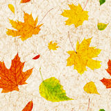 Seamless grunge background with flying autumn leaves Stock Photography
