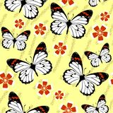 Seamless grunge butterfly texture 528 Stock Image