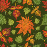 Seamless grunge leaves background. Thanksgiving. Seamless grunge  autumn leaves background. Thanksgiving (from my big Seamless collection Royalty Free Stock Image