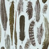 Seamless hand darwn watercolor pattern with feathers. Vintage style stock illustration